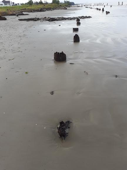 6 New Piles at Lutong Beach